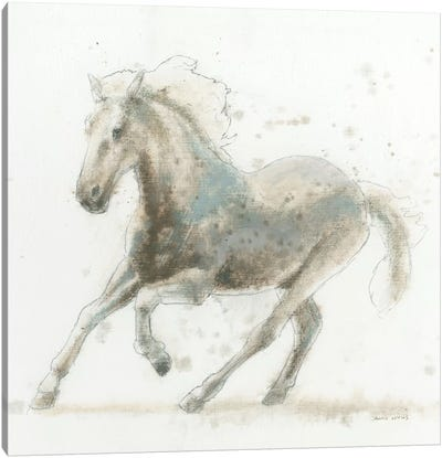 Stallion II Canvas Art Print
