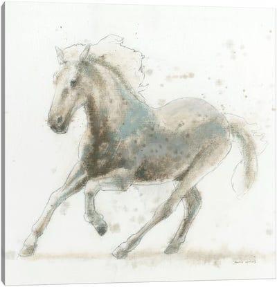 Stallion II Canvas Print #WAC4214