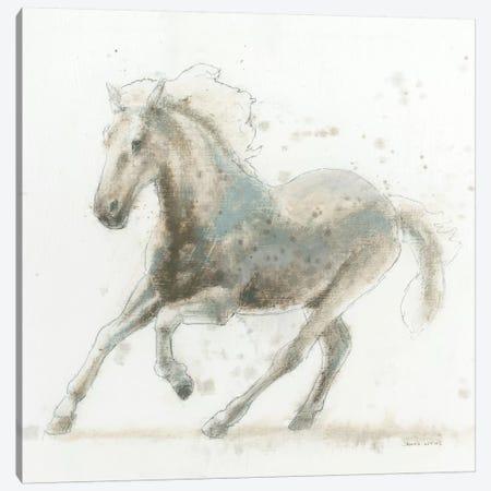 Stallion II Canvas Print #WAC4214} by James Wiens Canvas Art Print