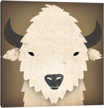 Buffalo I Canvas Art Print