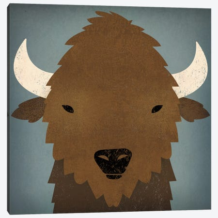 Buffalo II Canvas Print #WAC4250} by Ryan Fowler Canvas Wall Art