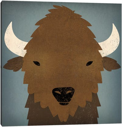 Buffalo II Canvas Art Print