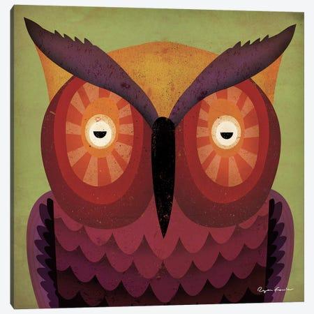 Owl WOW Canvas Print #WAC4254} by Ryan Fowler Art Print