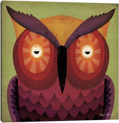 Owl WOW Canvas Art Print