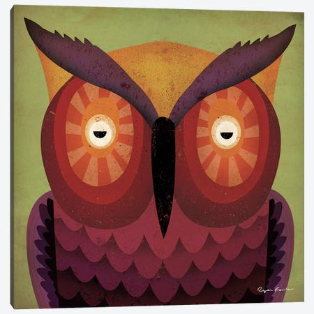 Owl WOW Canvas Print #WAC4254} by Ryan Fowler Art Print