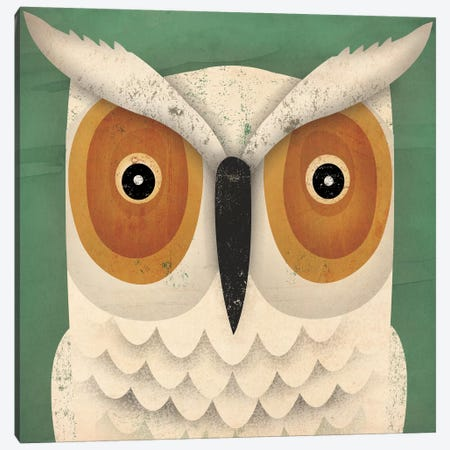 White Owl Canvas Print #WAC4263} by Ryan Fowler Canvas Art Print
