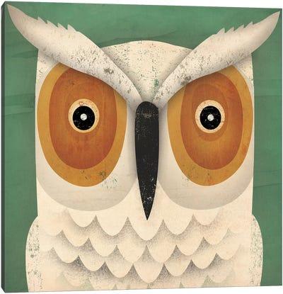 White Owl Canvas Print #WAC4263