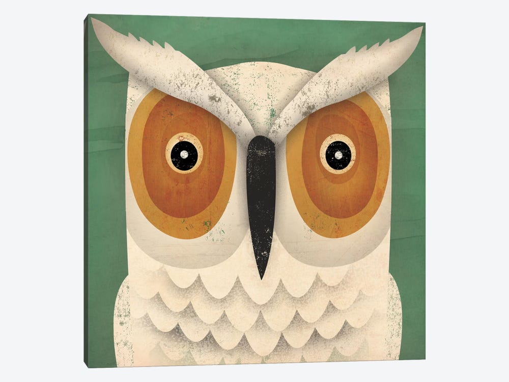 White Owl by Ryan Fowler 1-piece Canvas Wall Art