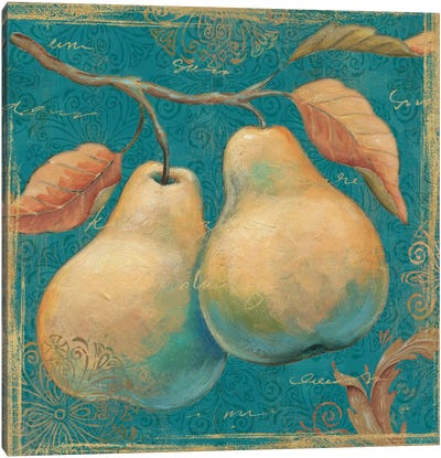 Lovely Fruits I  Canvas Art Print
