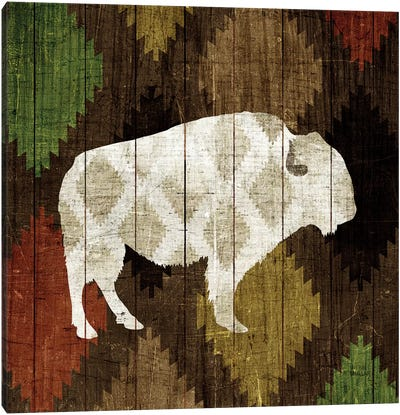 Southwest Lodge (Buffalo) Canvas Print #WAC4331
