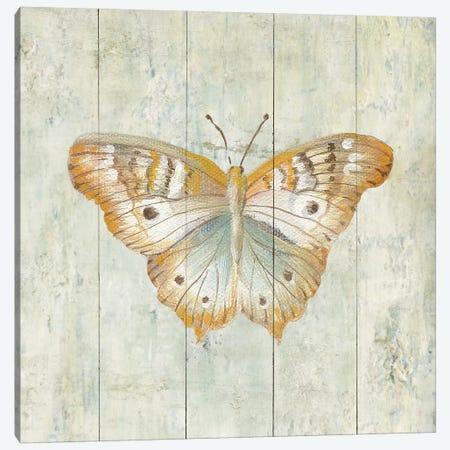 Natural Flora VII Canvas Print #WAC4343} by Danhui Nai Canvas Artwork