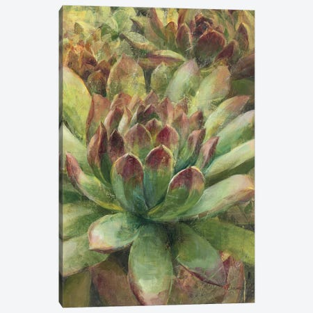 Nature Delight III Canvas Print #WAC4347} by Danhui Nai Canvas Print