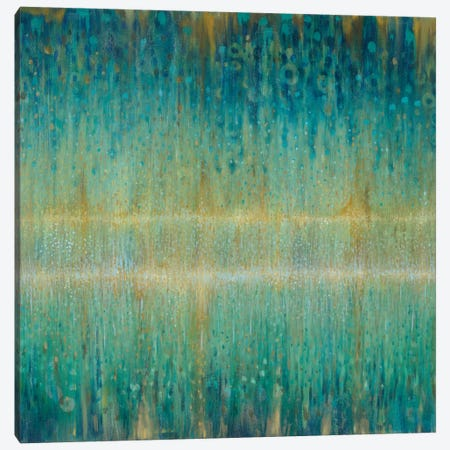 Rain Abstract I Canvas Print #WAC4350} by Danhui Nai Canvas Art Print