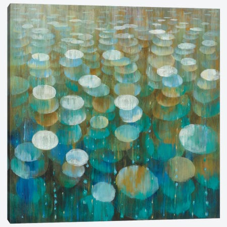 Rain Drops Canvas Print #WAC4351} by Danhui Nai Art Print