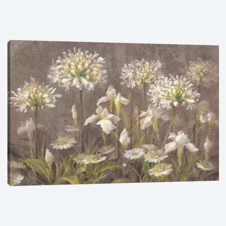 Spring Blossoms Canvas Print #WAC4352} by Danhui Nai Canvas Art Print