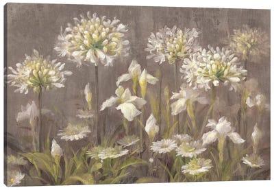 Spring Blossoms Canvas Print #WAC4352