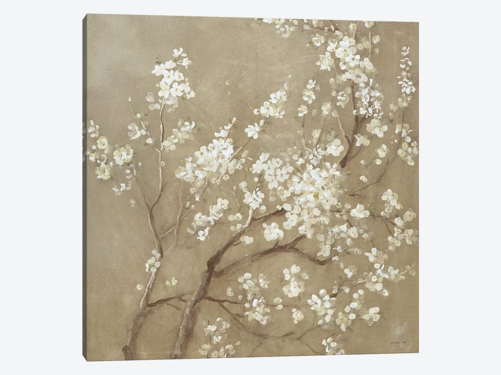 white cherry blossoms i canvas wall art by danhui nai