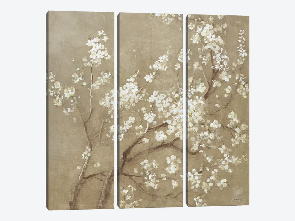 White Cherry Blossoms I by Danhui Nai 3-piece Canvas Wall Art