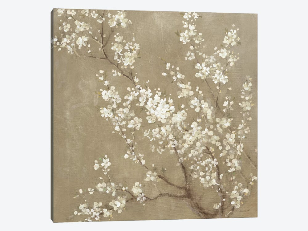 White Cherry Blossoms II by Danhui Nai 1-piece Canvas Art Print