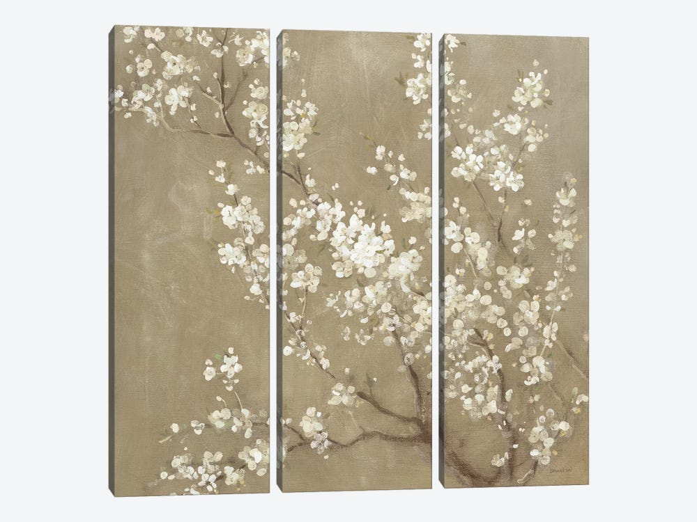 White Cherry Blossoms II by Danhui Nai 3-piece Art Print