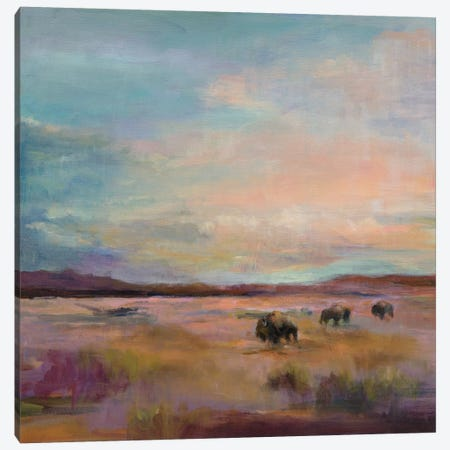 Buffalo Under A Big Sky Canvas Print #WAC4358} by Marilyn Hageman Art Print