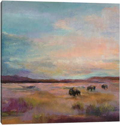 Buffalo Under A Big Sky by Marilyn Hageman Canvas Art Print