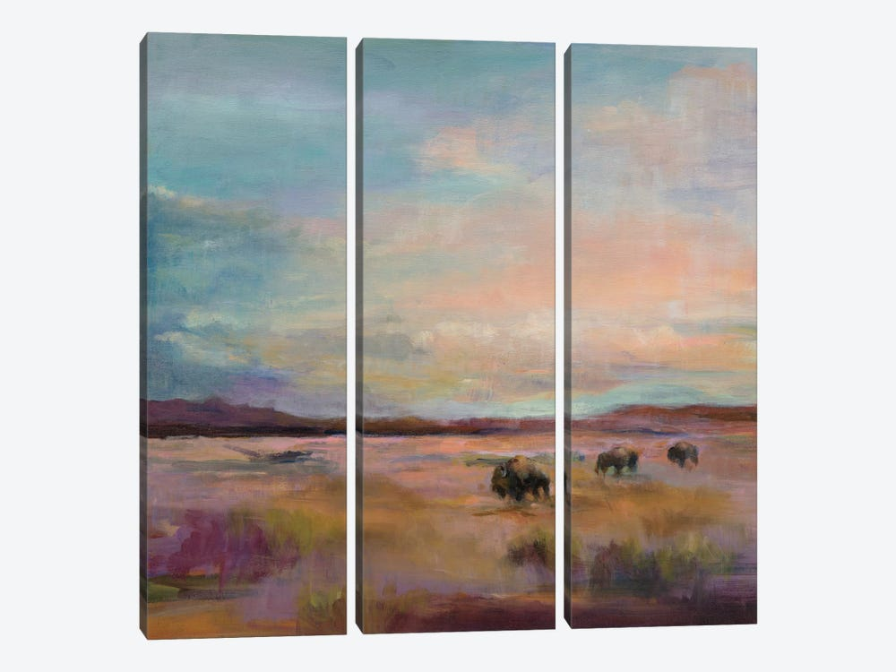 Buffalo Under A Big Sky by Marilyn Hageman 3-piece Canvas Art Print