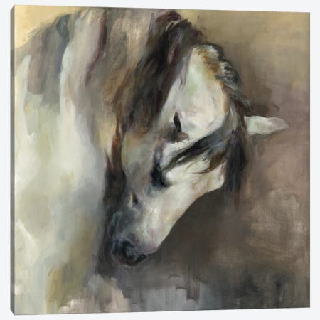 Classical Horse Canvas Print #WAC4359} by Marilyn Hageman Canvas Art Print