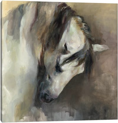Classical Horse Canvas Art Print