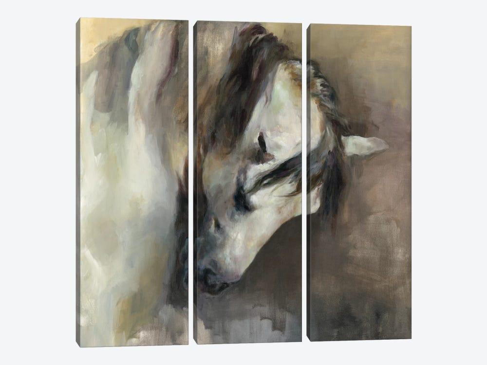 Classical Horse by Marilyn Hageman 3-piece Canvas Art