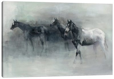 In The Mist Canvas Art Print