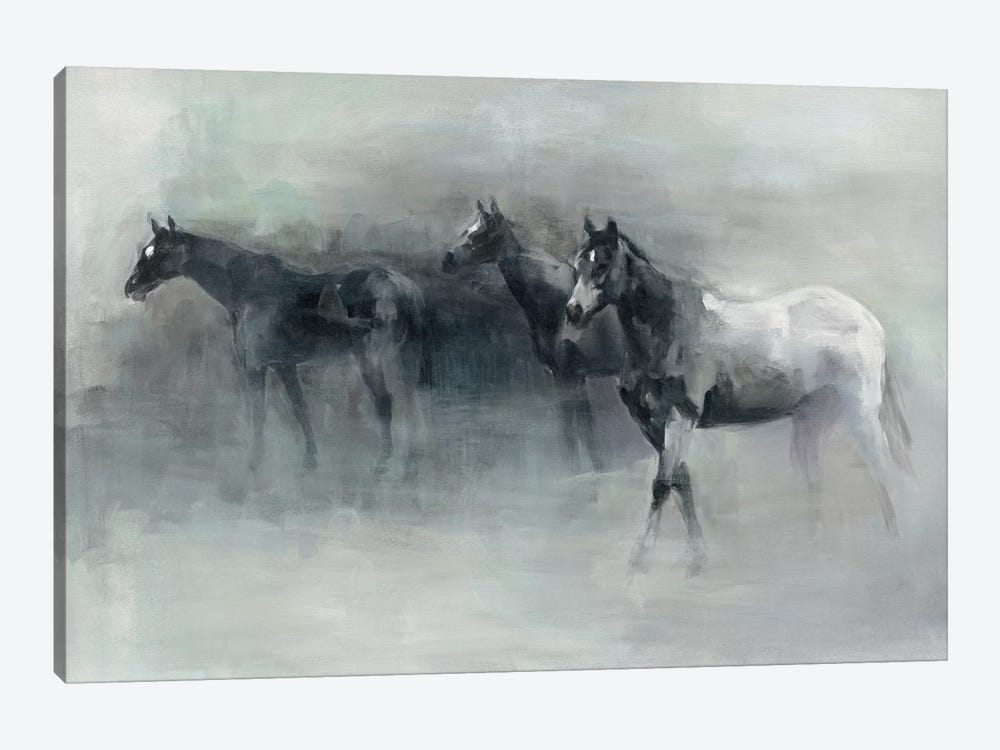 In The Mist by Marilyn Hageman 1-piece Canvas Print