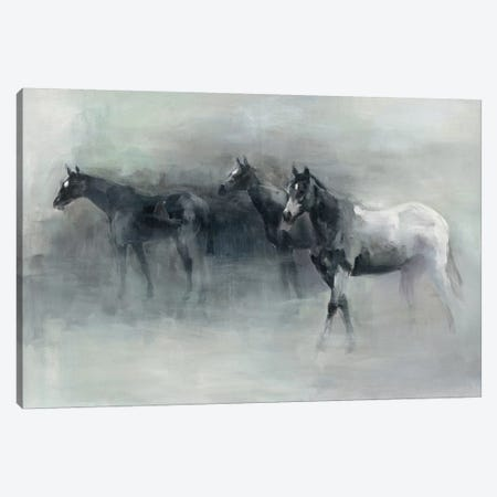 In The Mist Canvas Print #WAC4361} by Marilyn Hageman Canvas Art