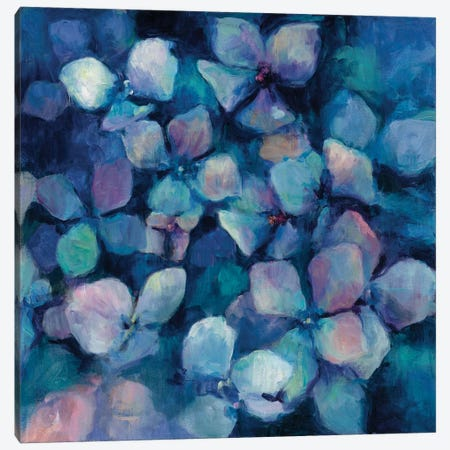 Midnight Blue Hydrangeas Canvas Print #WAC4362} by Marilyn Hageman Canvas Wall Art