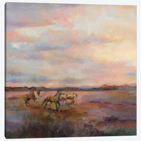 Mustangs Under The Big Sky Canvas Print #WAC4363} by Marilyn Hageman Canvas Artwork