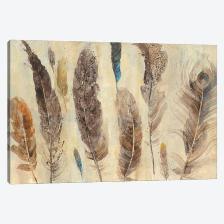 Feather Study Canvas Print #WAC4369} by Albena Hristova Canvas Artwork