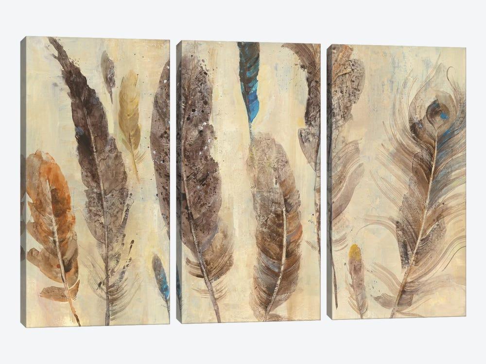 Feather Study by Albena Hristova 3-piece Art Print