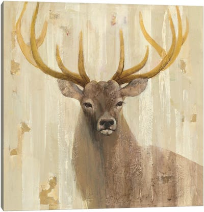 Forest King Canvas Art Print