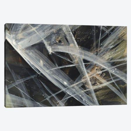 Glacier IV Canvas Print #WAC4373} by Albena Hristova Canvas Print