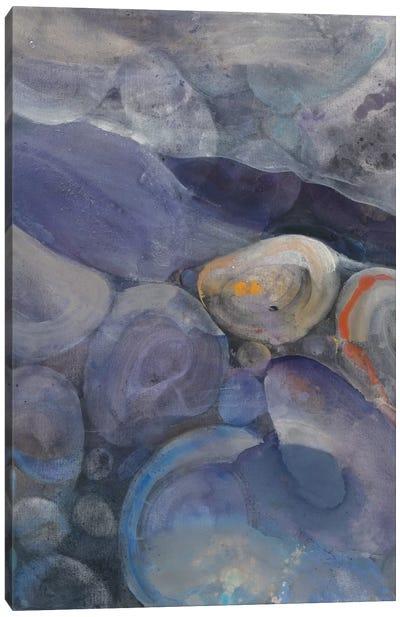 In The Stream II Canvas Print #WAC4376