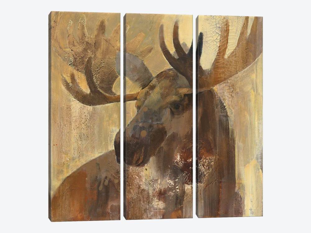 Into The Wild II 3-piece Canvas Art Print