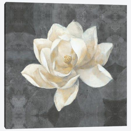 Majestic Magnolia Canvas Print #WAC4379} by Albena Hristova Canvas Print