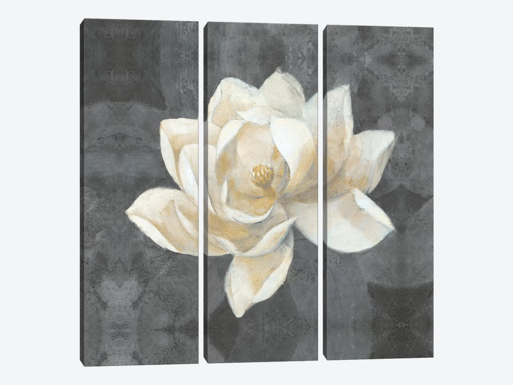 Majestic Magnolia by Albena Hristova 3-piece Canvas Artwork
