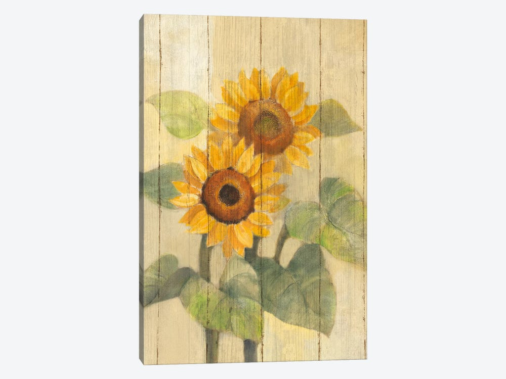 Summer Sunflowers I by Albena Hristova 1-piece Canvas Print