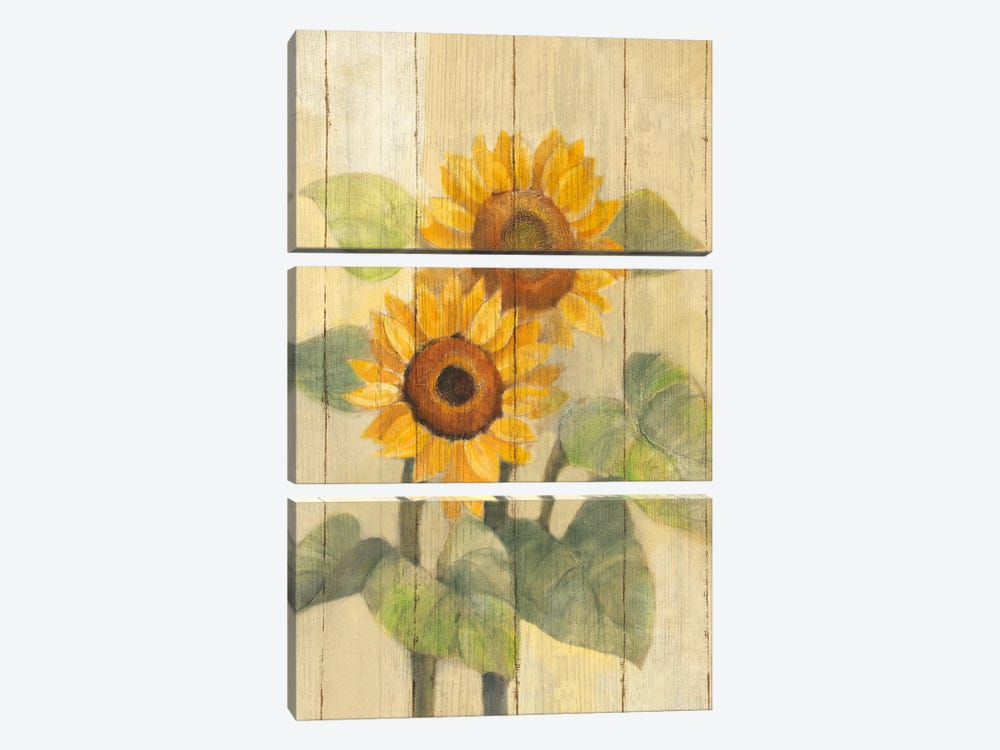Summer Sunflowers I by Albena Hristova 3-piece Art Print