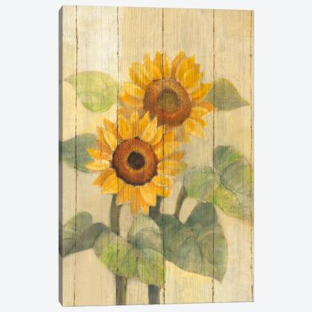 Summer Sunflowers I Canvas Print #WAC4385} by Albena Hristova Art Print