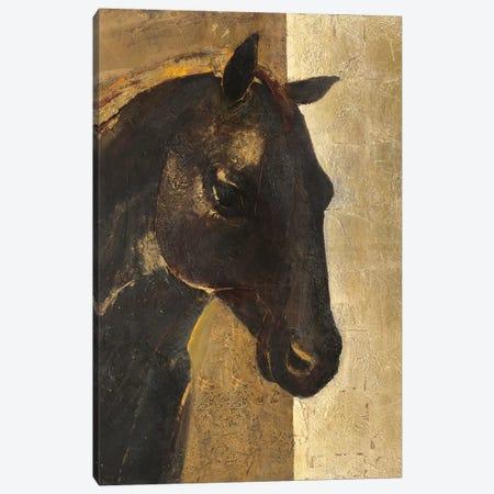 Trojan Horse I.A Canvas Print #WAC4392} by Albena Hristova Canvas Print