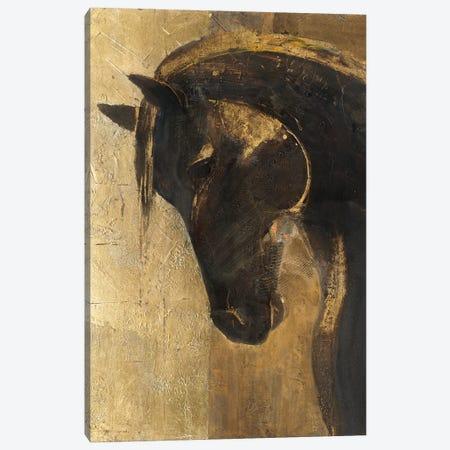 Trojan Horse II.A Canvas Print #WAC4394} by Albena Hristova Canvas Artwork