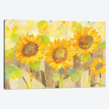 Turn To The Sun Canvas Print #WAC4395} by Albena Hristova Canvas Art