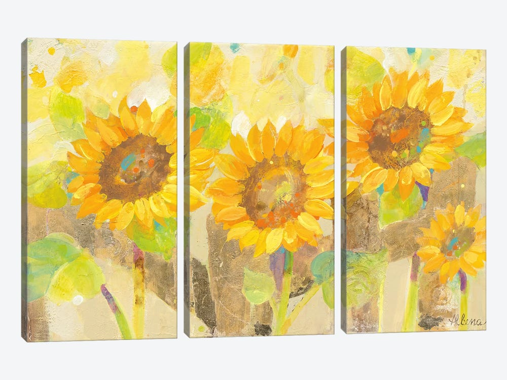 Turn To The Sun by Albena Hristova 3-piece Canvas Artwork